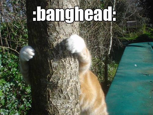 banghead.jpg