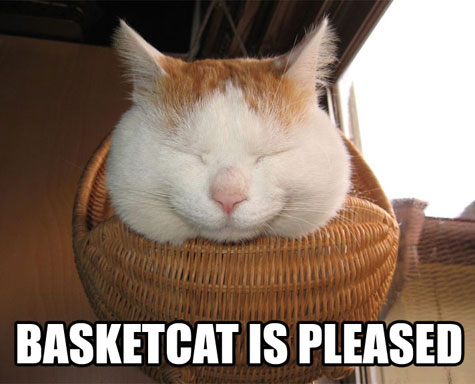 basketcat-is-pleased.jpg
