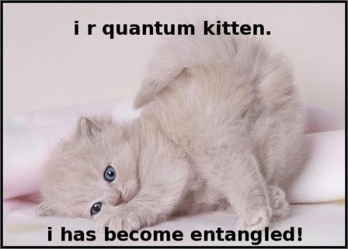 entangled1.jpg