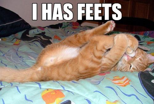 feets.jpg