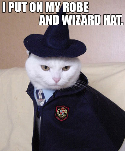 i-put-on-my-robe-and-wizard-hat.jpg