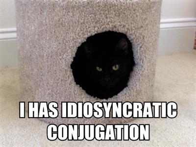 idiosyncratic-conjugation.jpg