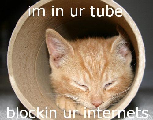 im-in-ur-tube.jpg