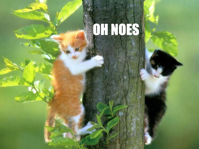 oh-noes2.jpg