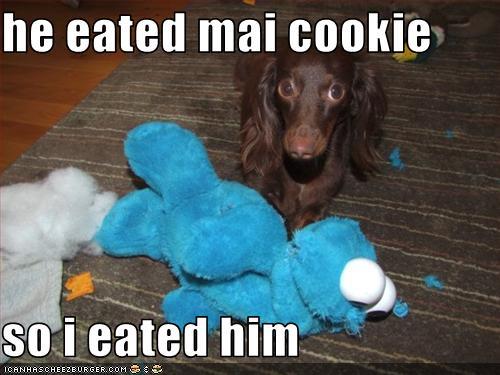 he-eated-my-cookie.jpg