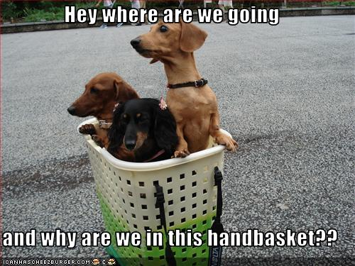 where-going-and-why-in-handbasket.jpg