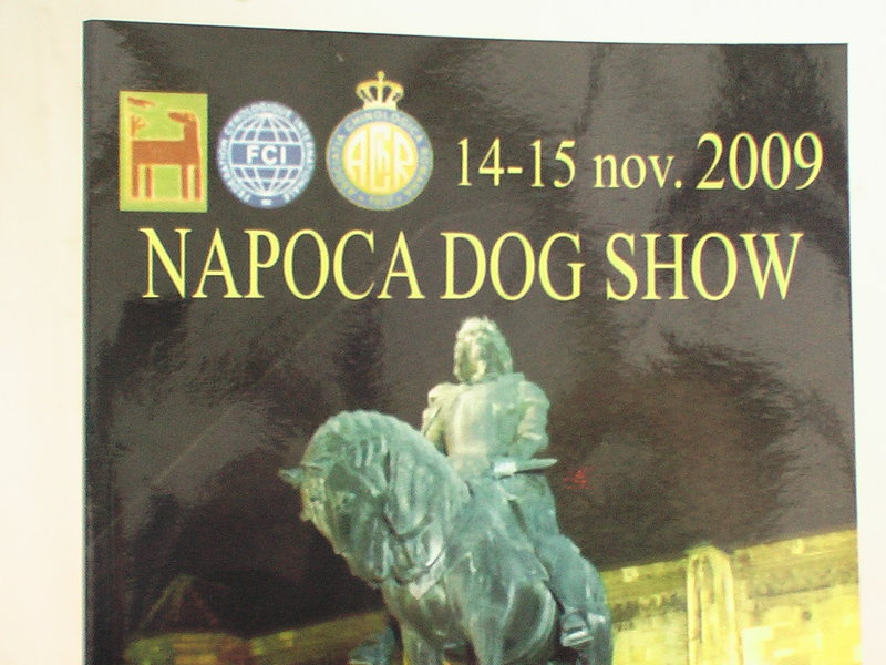 napoca-dog-show_rs.jpg